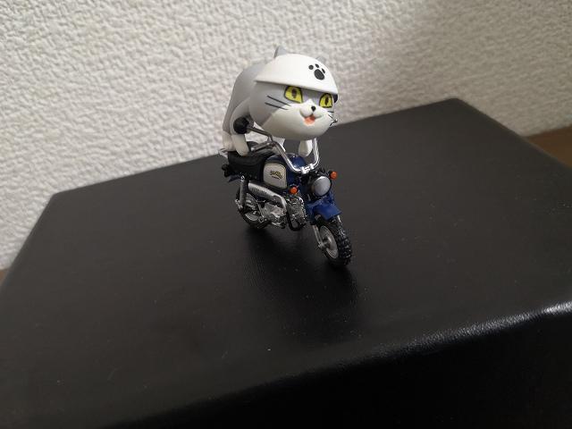 仕事猫とバイク